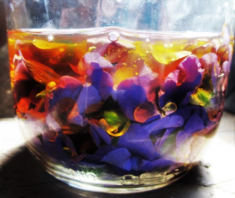 Sun-infused Violet Syrup | DeerNationHerbs.com