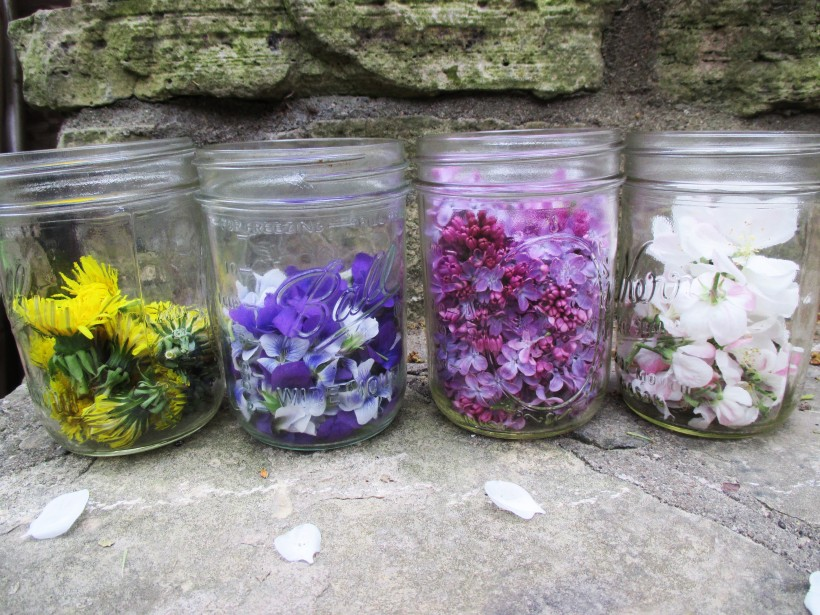 Picked Flowers in Jar | DeerNationHerbs.com