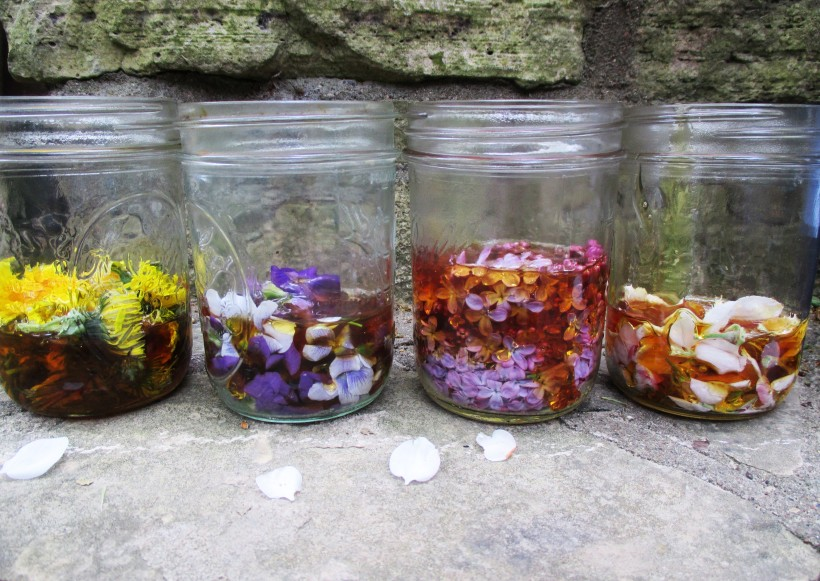 Honeyed Flowers in Jar | DeerNationHerbs.com
